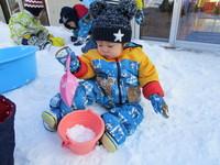 ヒヨコ雪遊びのサムネール画像