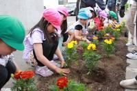 010613 花植え01.jpgのサムネール画像