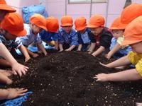 バケツ稲2のサムネール画像