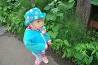 お散歩④のサムネール画像