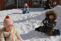 雪と一緒 ボールのサムネール画像