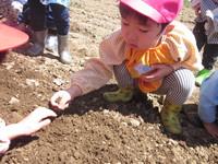 年少 畑のサムネール画像