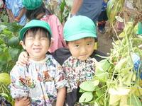 枝豆のサムネール画像