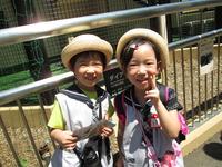動物園着のサムネール画像