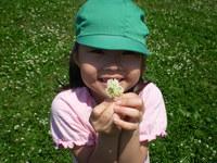 きれいなお花でしょ!のサムネール画像のサムネール画像