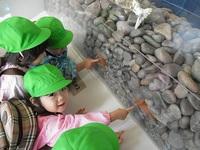 鮭2.JPGのサムネール画像