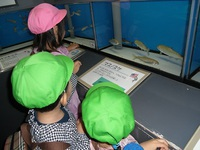 鮭4.JPGのサムネール画像